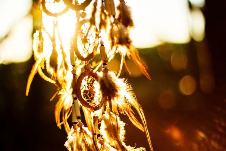 Close-up Nature Beauty In Nature Dreamcatcher EyeEmNewHere Outside Sunset Sunlight ☀ Sunshine No People Beautiful Spirituality Spirit