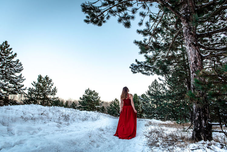 Morning Light Green White Background Pinetrees Tree Forest Copy Space Natural Snowy Cold Temperature Winter Snow Girl Woman In Red Red Dress Red Outdoors Nature Women One Person Young Adult Young Women Beauty In Nature Hair Standing