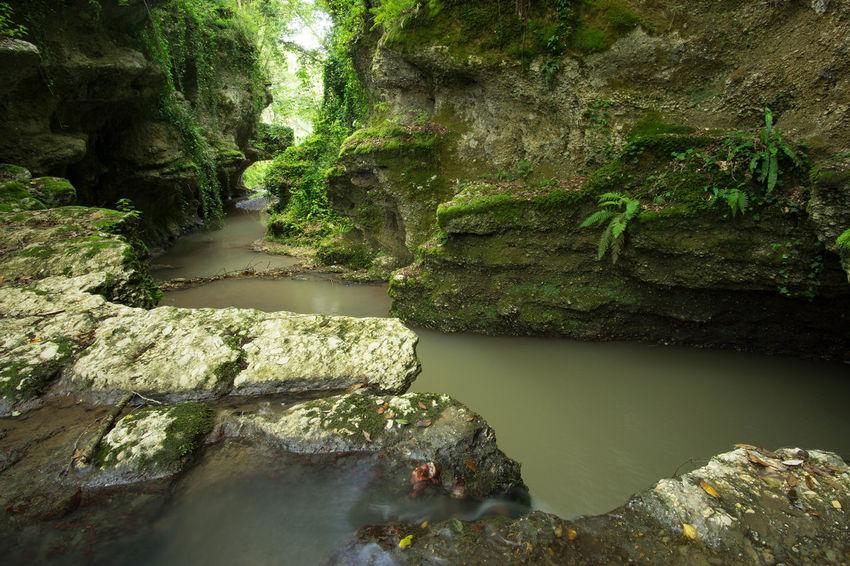 Long Exposure Visitlazio Sony A6000 Samyang 12mm F2 Italy Trakking Canyon Gallese Viterbo Green Tuscia  Tusciafotografia