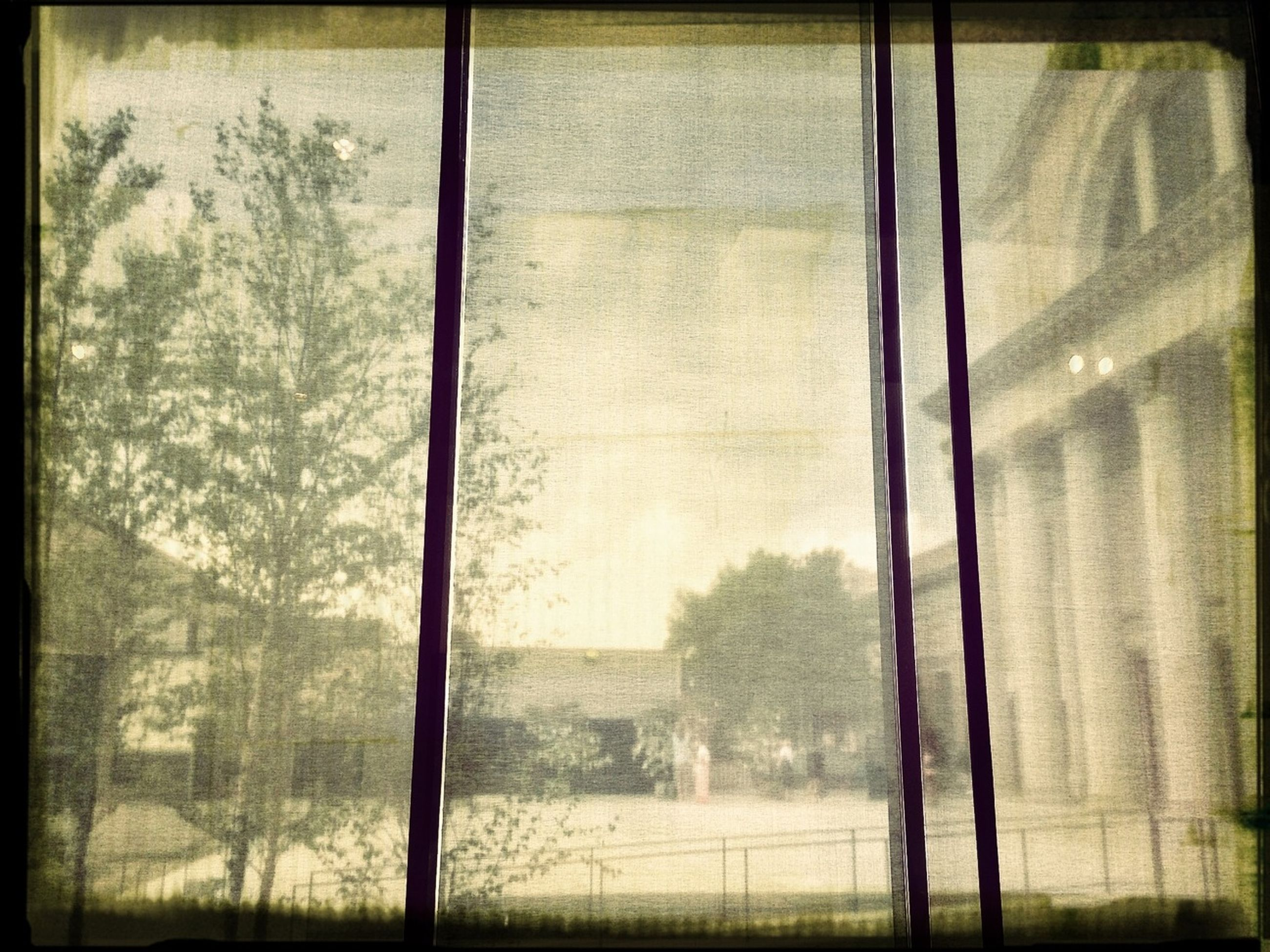 window, glass - material, transparent, indoors, built structure, tree, architecture, fog, auto post production filter, weather, transfer print, looking through window, reflection, glass, day, full frame, no people, building exterior, rain, foggy