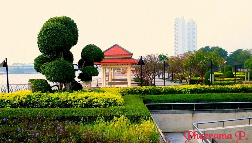 One in 1th park.;Rama 8th park. Landscape,. Silhouettes Of A City, ,Enjoy The River,Enjoying The Veiw  , Thailand_allshots .