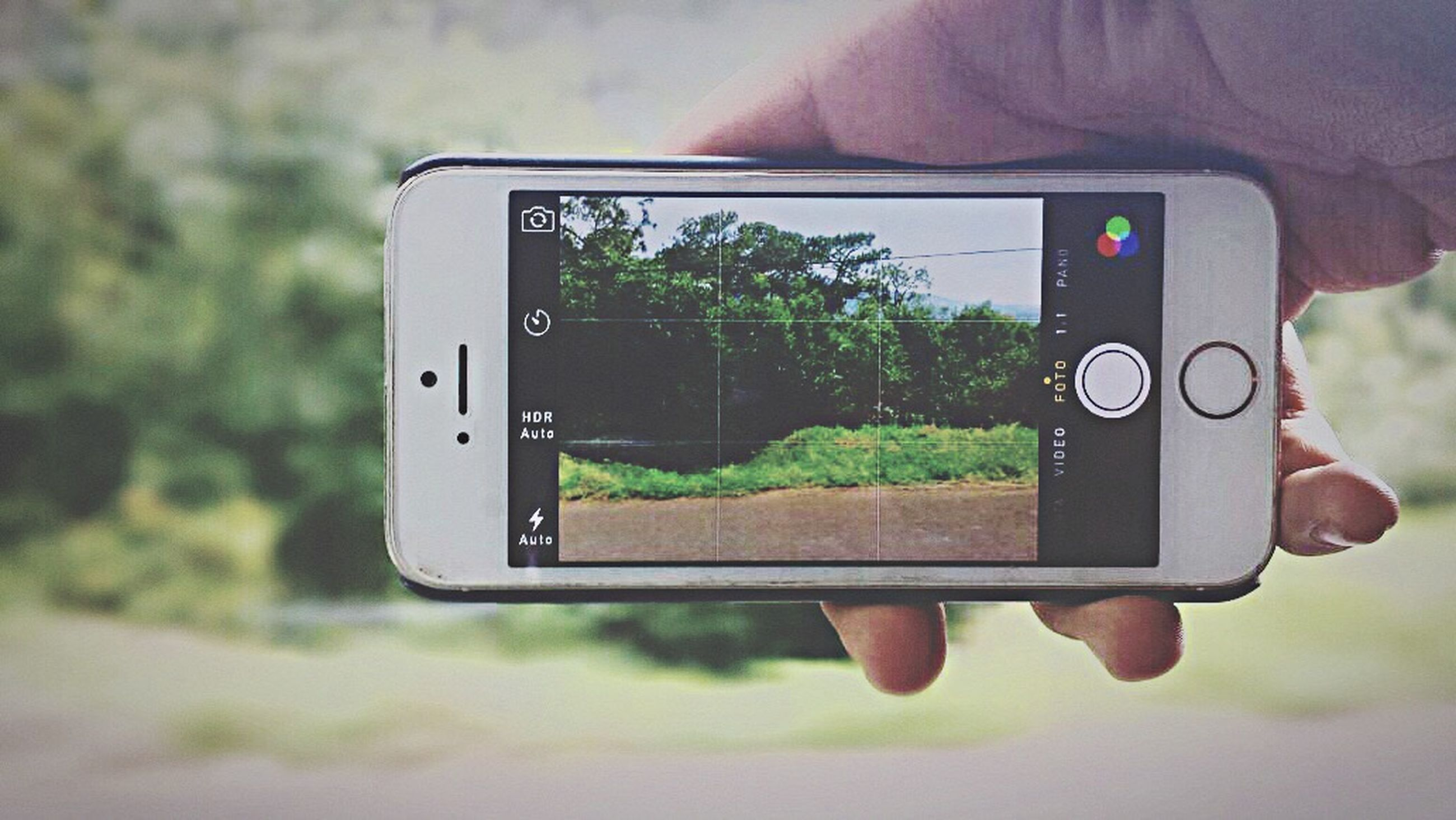 communication, technology, focus on foreground, tree, close-up, photography themes, wireless technology, green color, photographing, field, smart phone, one person, person, selective focus, day, part of, text, holding, growth, camera - photographic equipment