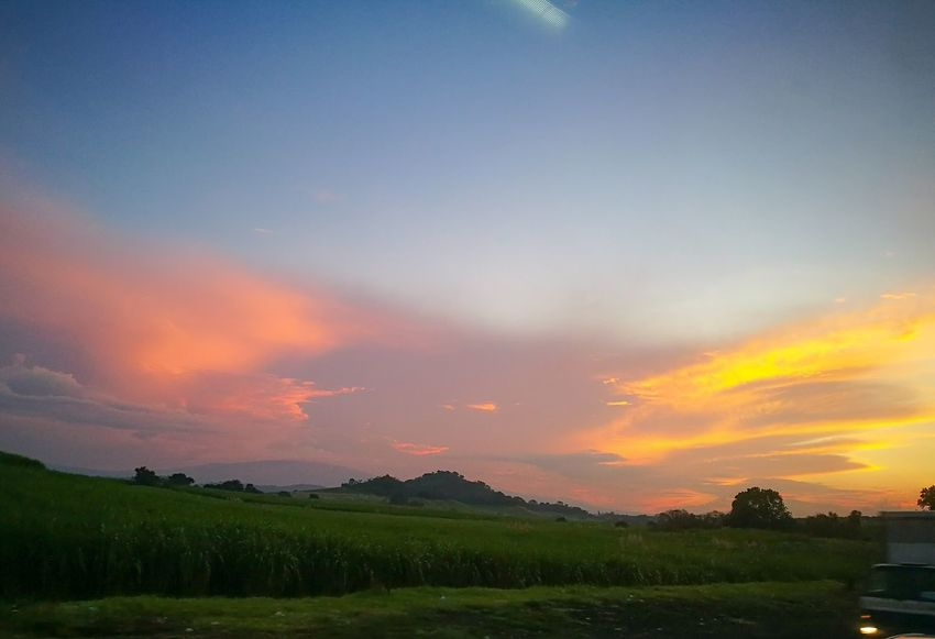 Dramatic Sky Beauty In Nature Agriculture Nature Sky Field No People Cloud - Sky Landscape Sunset Rural Scene Tranquility Scenics Growth Tree Freshness Multi Colored Outdoors Luminosity Fragility