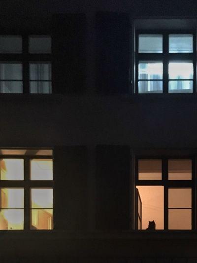 Four windows.