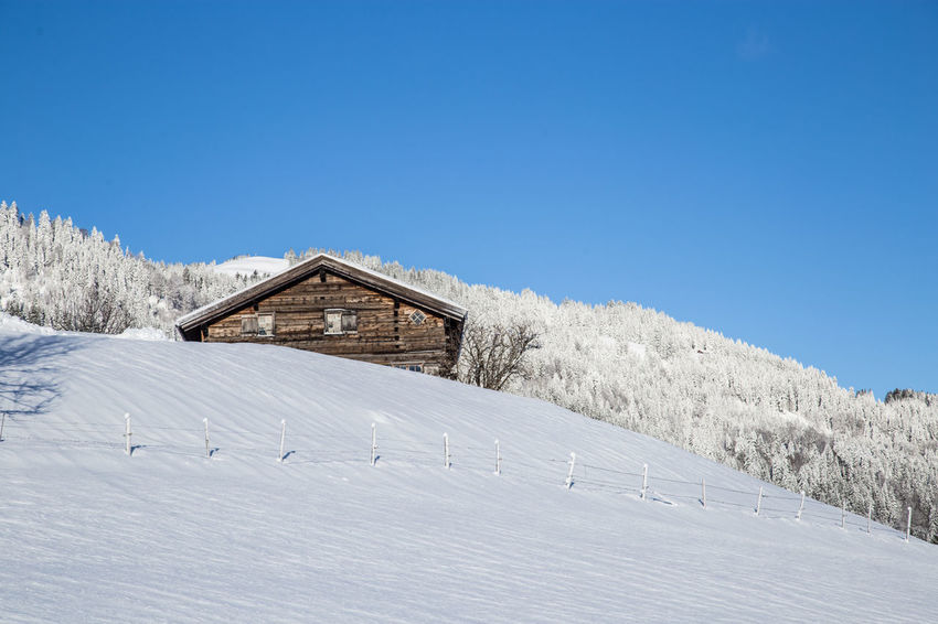 Allgäu Snow ❄ Winter Winter Landscape Wintertime Architecture Beauty In Nature Blue Sky Building Exterior Built Structure Clear Sky Cold Temperature Day Landscape Nature No People Outdoors Scenics Sky Snow Tranquil Scene Tranquility Tree White Landscape Winter