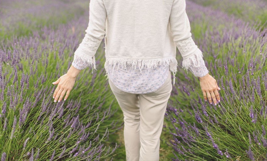 Casual Clothing Close-up Day Field Flowers Focus On Foreground Grass Grassy Green Color Growth Hands Lavanda Lavander Lavander Flowers Lavanderfields Leisure Activity Lifestyles Nature Outdoors Plant Selective Focus Standing