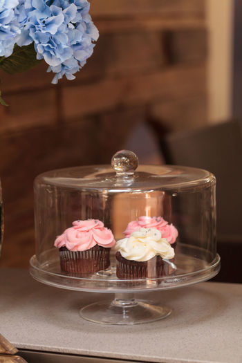 Pink and white cupcakes sit on an open windowsill in a glass domed platter with a blue hydrangea in a vase next to it. Baked Goods Baking Birthday Blue Cake Cupcake Day Desert Dome Glass Case Home Hydrangea Icing Indoors  Kitchen No People Pink Platter Snack Sweet Food Sweets Treat