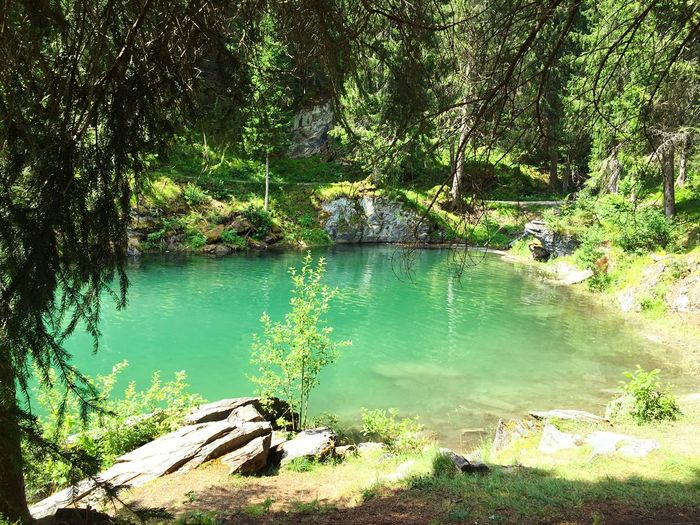 ☀️ Beautiful Day Swimming Lake