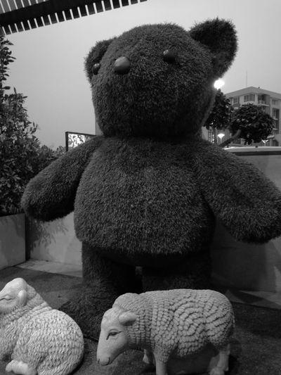 Monochrome Bear Huaweip9monochrome พี่หมี