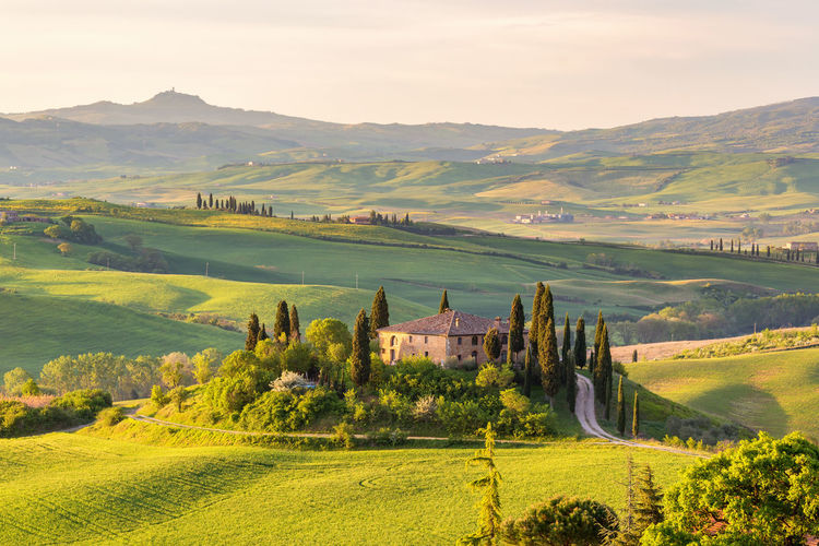 Farm house on a hill in Tuscany landscape Agriculture Country Farm Farmhouse Farmland Field Homestead Morning Light Tree Tuscany View Countryside Cultivated Land Hill Horizon Over Land House Italy Landscape No People Rolling Rural Scene Scenics Sunrise Valley Villa