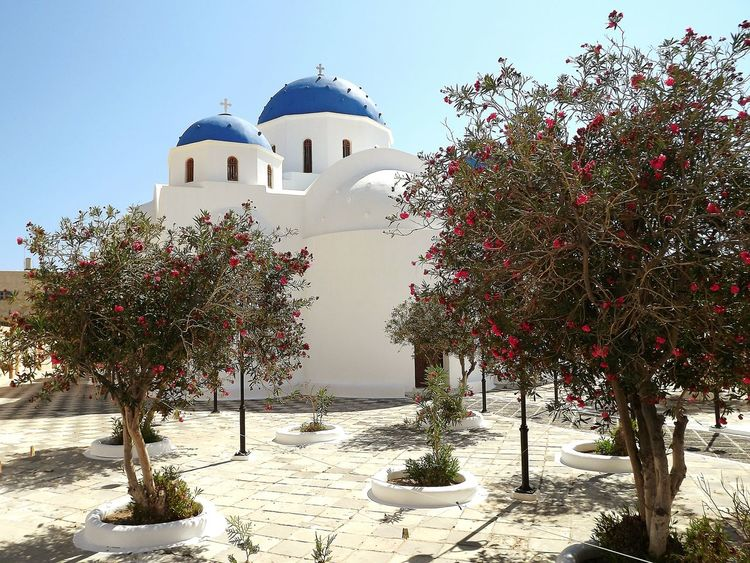 Architecture Tree Dome Religion Place Of Worship Outdoors Tranquil Scene Santorini Greece Tourism Summer Blue Dome Church Sky No People Perissa Perissa Greek Orthodox
