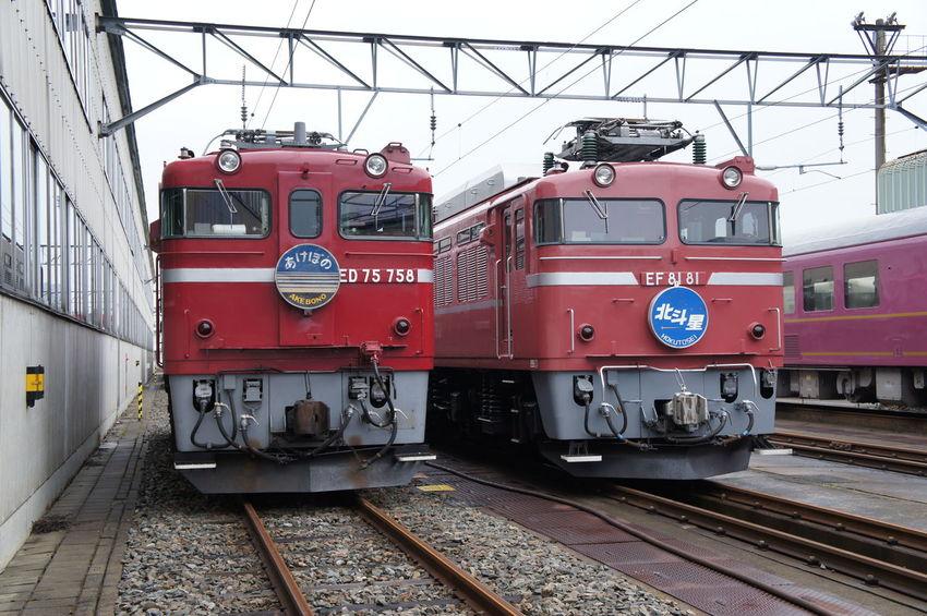 EF81 鉄道 あけぼの 北斗星