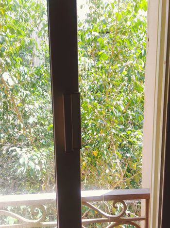 The view is unreal😍 Window Door Day Growth House Window Sill No People Curtain Plant Indoors  Close-up Tree Nature Aesthetically Pleasing Aesthetics Aestheticshot ınstagram Instagramer Photography Outdoors Nature Flower Trees And Sky Trees Tree