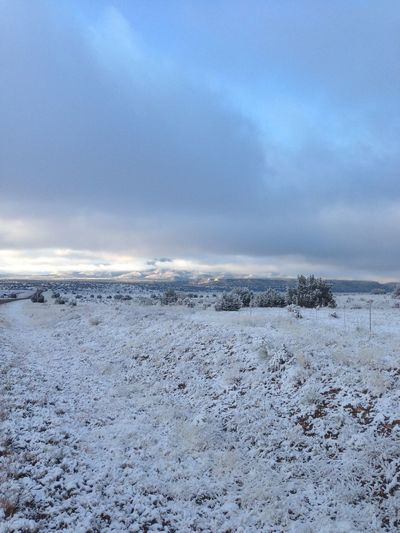 Cold Nature Scenic Scenic View Scenics Snow Tranquil Scene Tranquility