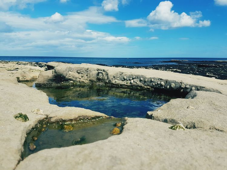 Beach Sea Nature Sand Water Horizon Over Water Cloud - Sky Outdoors Sky Day Travel Destinations Beauty In Nature Scenics Landscape No People Low Tide Rockpool Rockpooling Whitburn Rocky Coastline Rocky Beach Lifes A Beach England Tyne And Wear South Shields