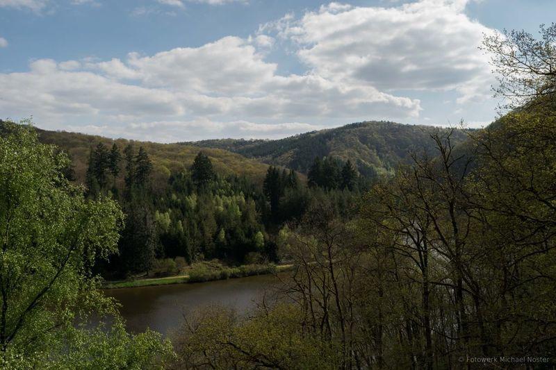 Fluss Travel Destinations Flusslandschaft Saarschleife Mountain Day No People Nature Outdoors River Water Landscape Tree Forest
