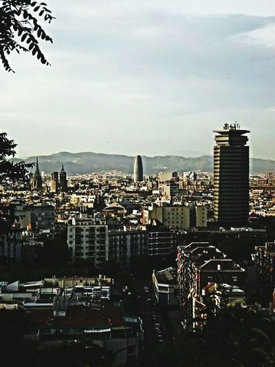 Montjuic Urban Landscape Skyline The View From Here