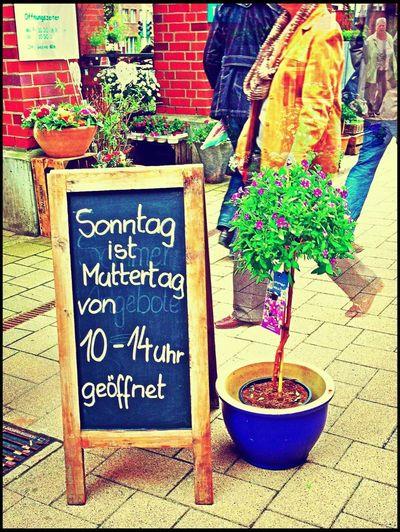 Streetart Münster