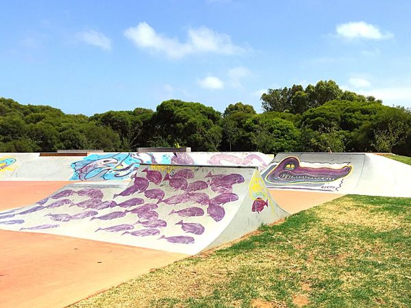 Skate Park Design Expression Western Australia Artistic Expression ArtWork Colorful Skater Art Art Mural Urban Art Skate Park Ramps Skate Life Skateboarding Recreation  Exercise Fun Kids Childhood Memories Skater Zone Skater Ramps Custom Mural Scooter Ramps Scooter Spearwood Adrenaline Rush