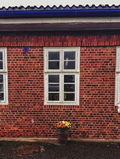 German Gemütlichkeit Welovehh Germangemütlichkeit Five Blumen Blumentopf