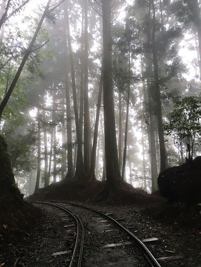 Mountains Rail