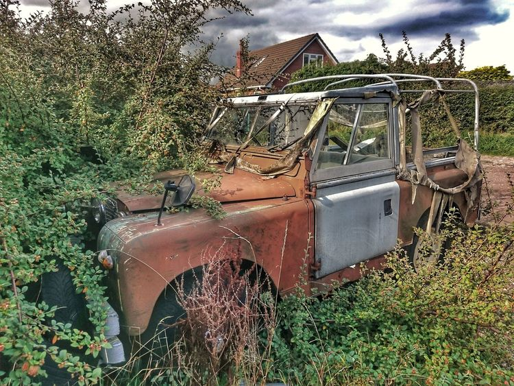 Car Land Vehicle Grass Parked Car Rotting Away Aluminium Body Rustygoodness Overgrown And Beautiful Overgrowth And Unmaintained Rusty Autos Rusty Things Neglected Urbexphotography Abandoned MkI Land Rover Urbexworld Landrover Series 1 Car Porn Mk1 Neglected Beauty Land Rover Soft Top Urbexexplorer Urbexphotography Old But Awesome Streetphotography Lost In The Landscape