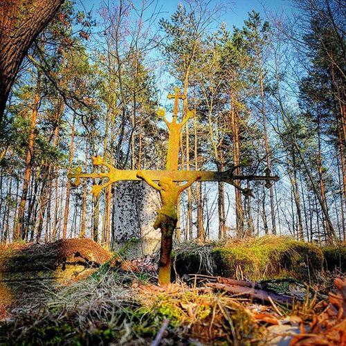 Abandonedgraveyard Wroclove Wroclaw Poland Crucifixion Crucifix CrossAbandonedgraveyard