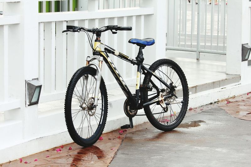 Bicycle Mode Of Transport Transportation Land Vehicle Single Object Window Stationary No People Day Outdoors Tire City