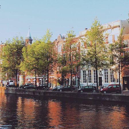 Projectsw Hiddentreasure Amsterdam Canal : 여행의 시작점 . 운하의 도시, 암스테르담 . 여행의 초반이었기에 모든 것이 두렵고 낯설게 느껴지기만 했었다. 베르메르와 고흐의 작품도 기쁨이었지만 여행이 가져다 주는 그 순간의 행복을 즐기는 법을 아직 깨닫지 못했던 나. Netherlands Street Roadside Trees Buildings Travel Travelgram Alonetraveller Afternoon 2015  유디니 여행스타그램 나홀로여행 네덜란드 여행에미치다
