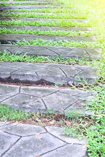 stair stone Stairway Day Grass Green Color Growth Nature No People Outdoors Plant Stair Steps Stair Stone Staircase Stairs_collection Stairways