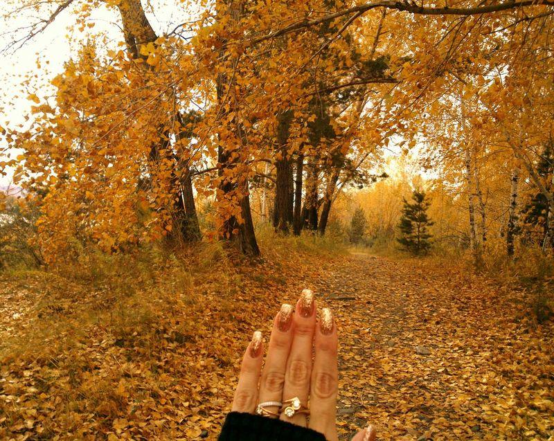 Golden Autumn & Golden Manicure. Manucure D'or et Automne D'or. Золотая осень и златой маникюр. Autumn Matching Glitter Golden Gilded Gilt
