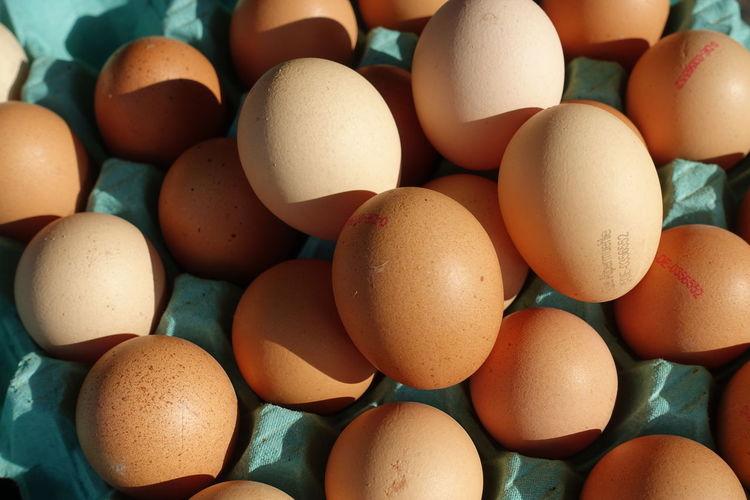 eggs Backgrounds Full Frame Egg Close-up Food And Drink Egg Carton Animal Egg Farmer Market