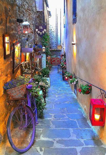 ıtaly Toscana Toscany Italy❤️ Italia Bikelove Cortona Arezzo Cortona,italy Cortonabike Cortona City Bikepourple Lavanda Lavander Flowers Mode Of Transport Nature Tranquil Scene Bicycle