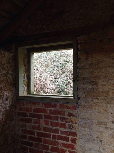 Abandoned Tyneham Village Abandoned Derelict Abandon_seekers Urbanexplorer Abandonment_issues Malephotographerofthemonth EyeEm_abandonment Abandoned Places Urbanexploration Abandoned & Derelict Abandoned Buildings Urban Exploration Dorset