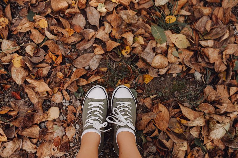 Low section of person standing by autumn leaves