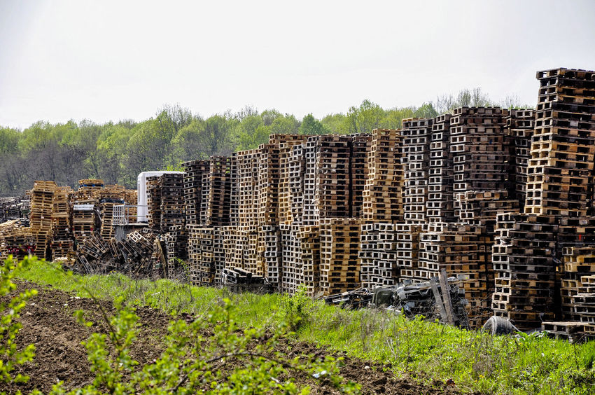 Taking Photos Springtime Greenland Pallet Wood Deposit Pallets Fieldscape Wood - Material