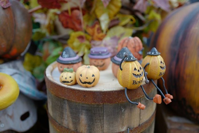 EyeEm Selects Rusty Helloween🎃🎃🎃 Dolls Decoration Focus On Foreground Close-up Bokeh Photography Leica Q 28mm F/1.7 September 2017 ハウステンボス Huis Ten Bosch Sasebo City Nagasaki JAPAN Japan Photography