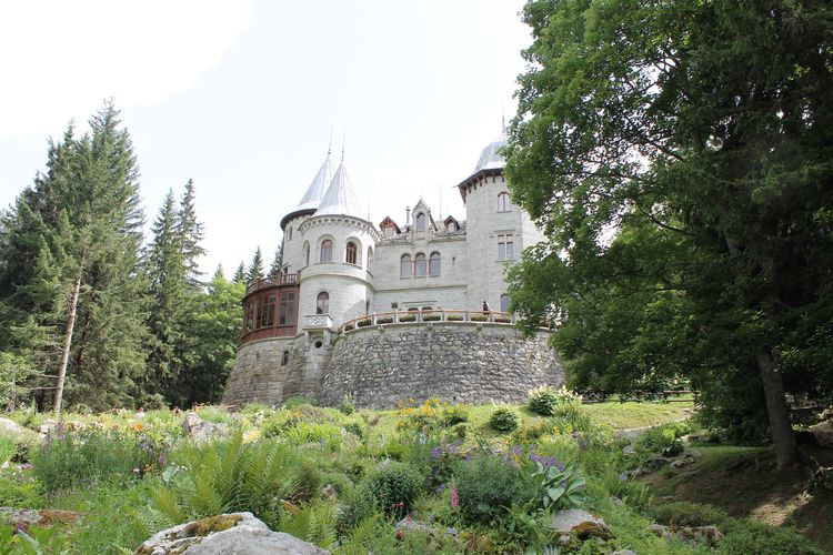Architecture Building Exterior Built Structure Castle Day Frainf Green Color Growth History Italy Nature No People Outdoors Place Of Worship Savoia's Castle Sky Spirituality Travel Destinations Tree Valle D'aosta