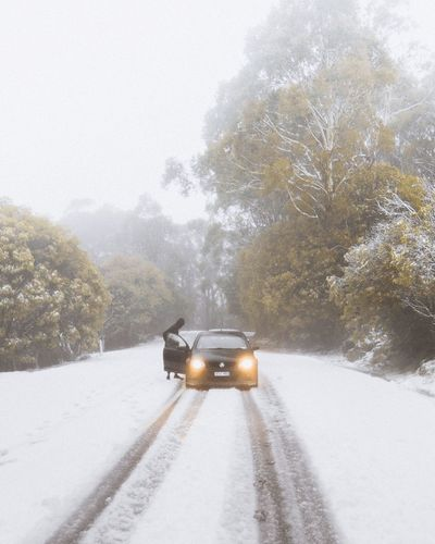 Car on road by trees during winter