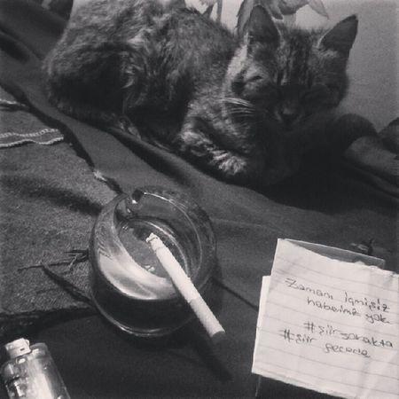 Zamanı içmişiz haberimiz yok.. Siirsokakta şiirgecede Sigara Gece şiir kedi