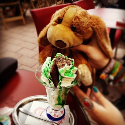 Got some Aftereight Icecream . Ohboyhowdy Puppyontour Puppy beagle italian british cuxhaven cute love friends swag hipster cool awesome adorable picoftheday epic sweet germany northsea stuffedanimals