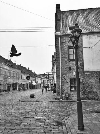 Kaunas Lithuania Walking Around Architecture Flying Blackandwhite Baltics2k16