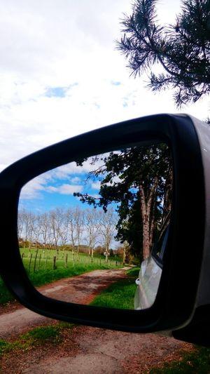 Retrovisor Retroviseur Tree Car Sky Close-up Grass Cloud - Sky Vehicle Mirror
