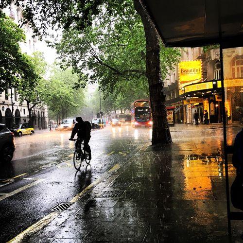 London Rain Summer British Summertime Cyclist Aldwych June