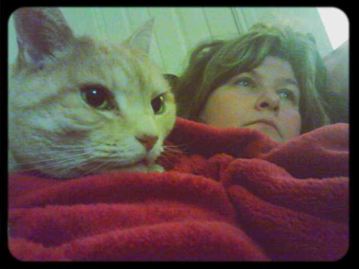 watching tele with my baby Cats Relaxing Hanging Out
