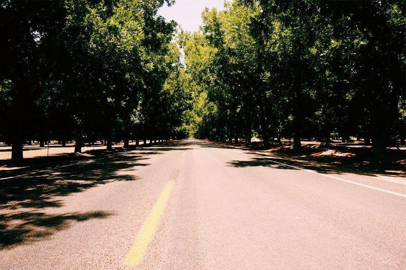 Who said New Mexico wasn't beautiful? First Eyeem Photo