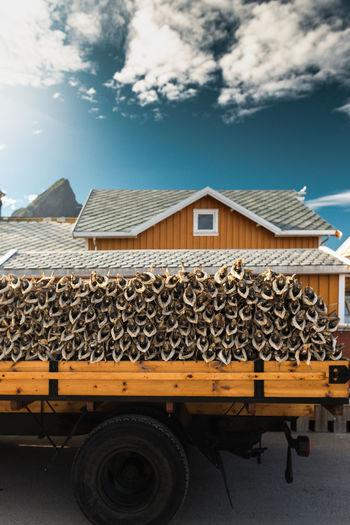 Stockfish truck