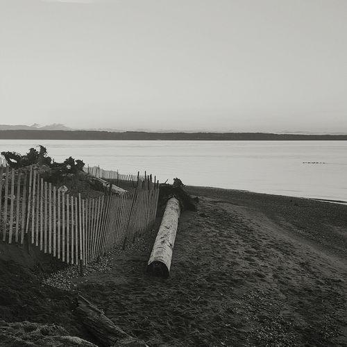 Mukilteo Beach Sunset First Eyeem Photo EyeEmNewHere