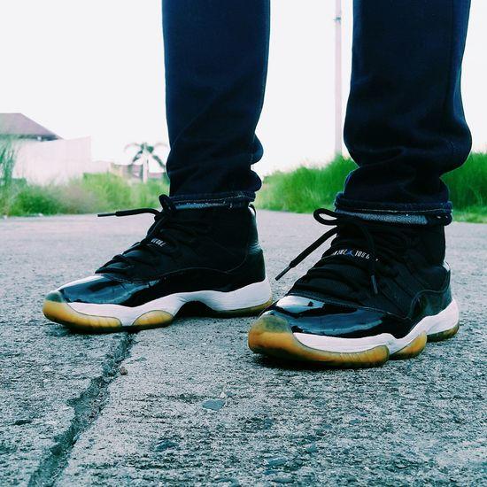 Air Jordan Spacejam11