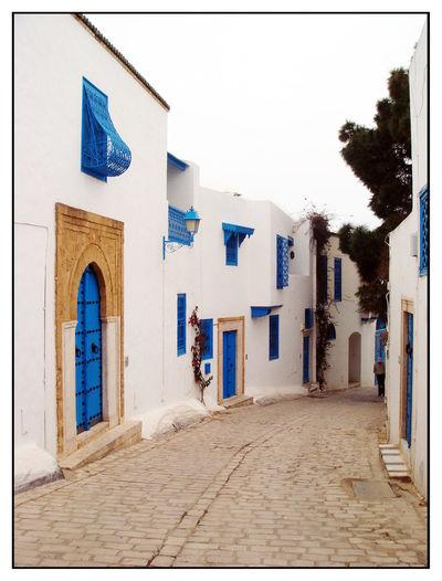 Calle Fachadas Nabeul Tunisia Tunisia Nabeul Tunez